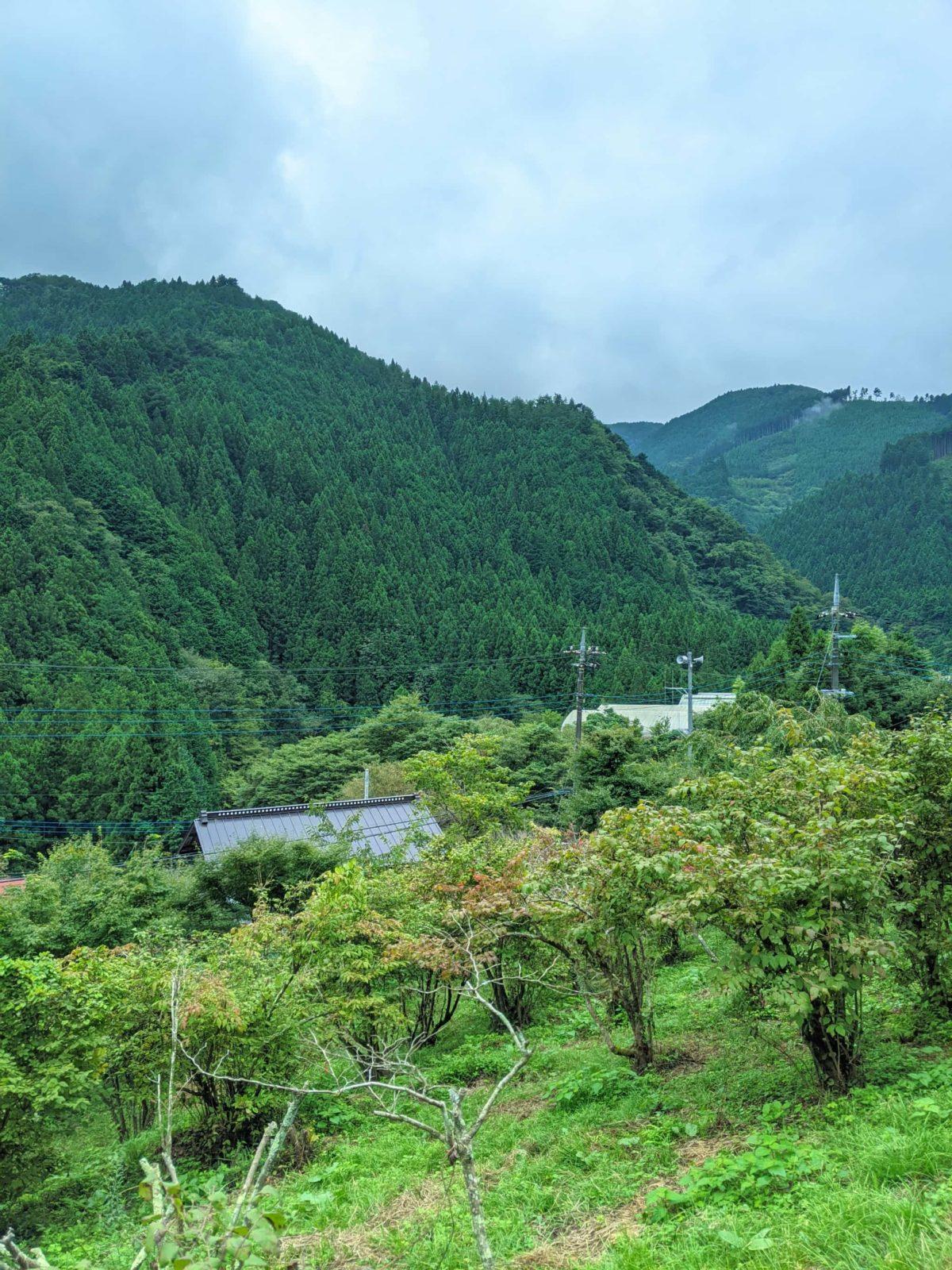 檜原村一泊旅行2020