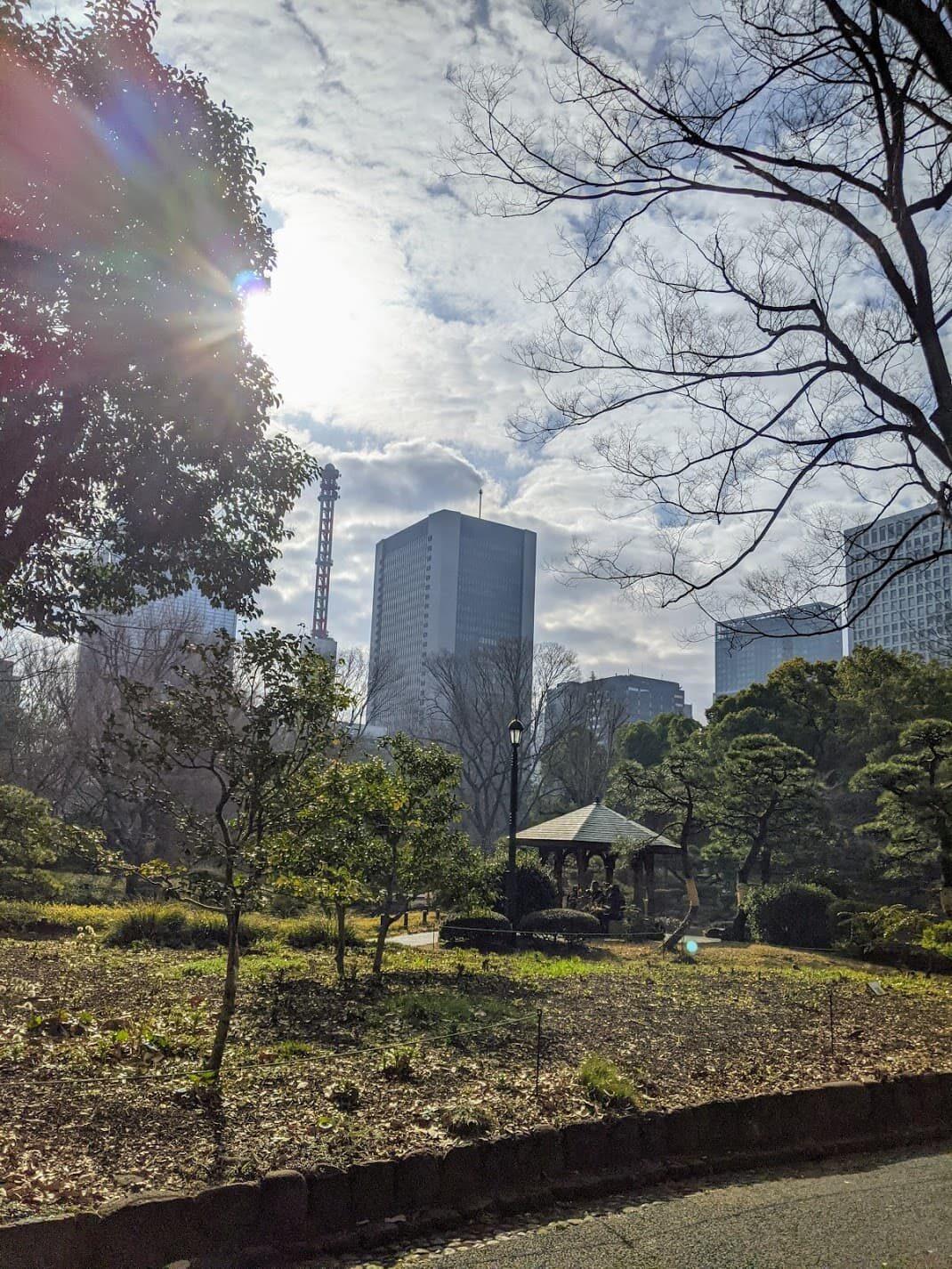 日比谷公園の写真