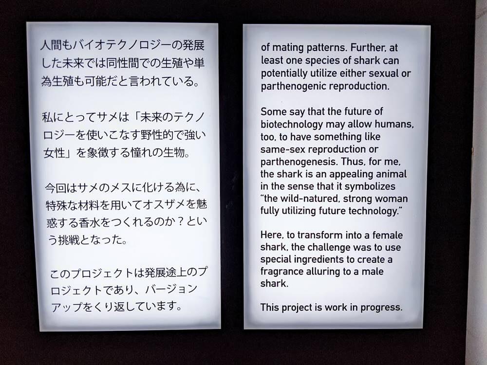 21_21 DESIGN SIGHT「トランスレーションズ展」写真画像
